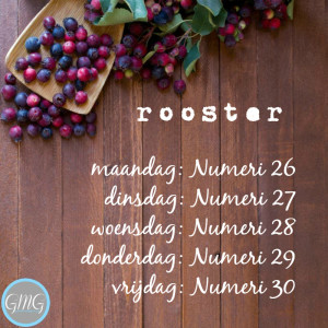Good Morning Girls rooster Numeri 26 t/m 30