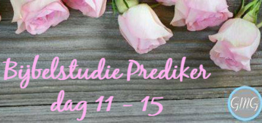 Bijbelstudie Prediker week 3 Good Morning Girls