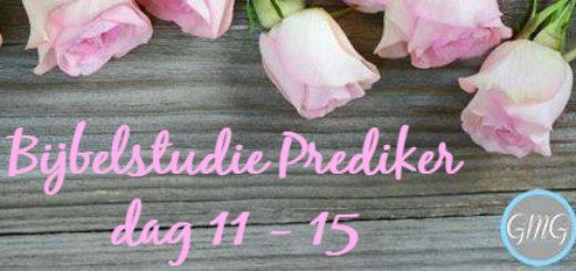 Bijbelstudie Prediker week 3 Good Morning Girls