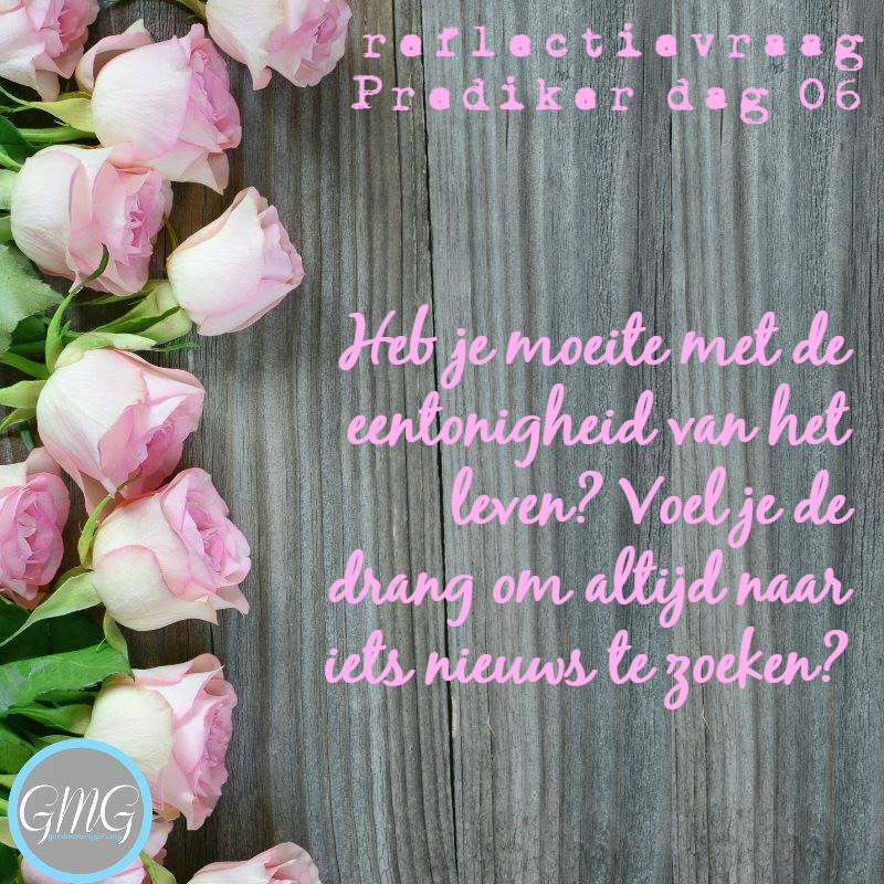 reflectievraag Prediker dag 6 Bijbelstudie Good Morning Girls