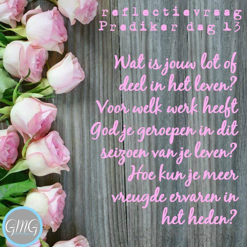 reflectievraag Bijbelstudie Prediker dag 13, good Morning Girls
