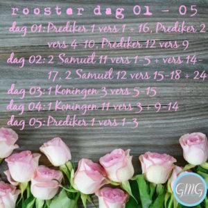 leesrooster Prediker, week 1, Good Morning Girls, Bijbelstudie