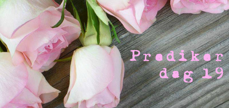 Prediker dag 19