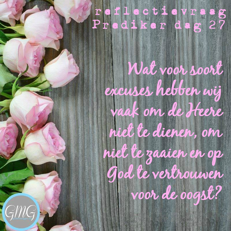 reflectievraag Bijbelstudie Prediker dag 27, Good Morning Girls