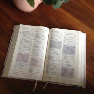 20161123-het-mooie-geschenk-van-de-vrouwenbijbel-2