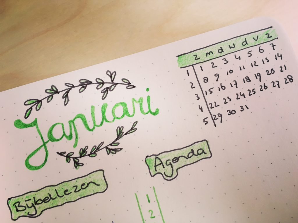 bullet journal, jaarplanner, monthly braindump bujo
