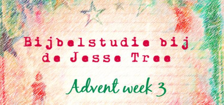 advent-jesse-tree-week-3