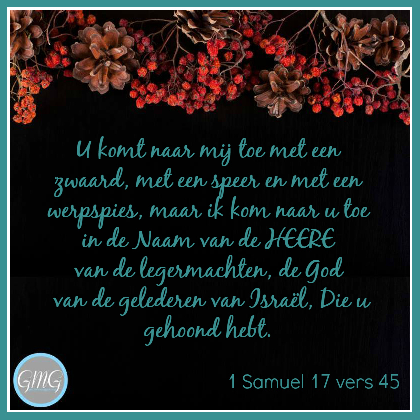 dagtekst 1 Samuel dag 17