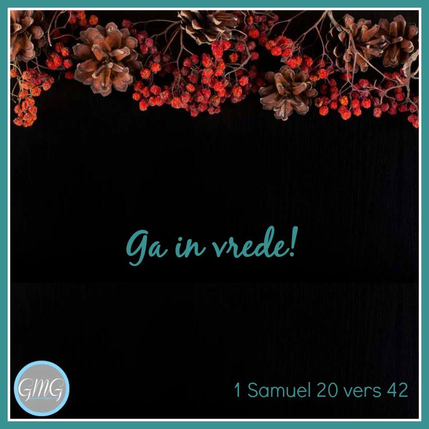 dagtekst 1 Samuel dag 20