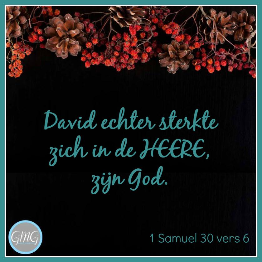 dagtekst 1 Samuel dag 30